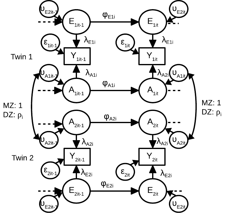 Multilevel Dynamic Twin Model